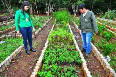El año pasado Itaipú produjo más de un millón de plantines para reforestación
