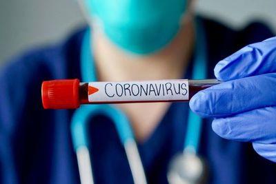 Ya se registraron más de 115.000 casos de COVID-19