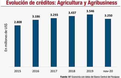 Agricultura tecnificada: composición y perspectivas en la economía paraguaya