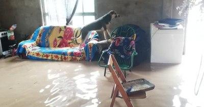La Nación / Intensas lluvias: al menos 700 familias afectadas por inundación en Boquerón