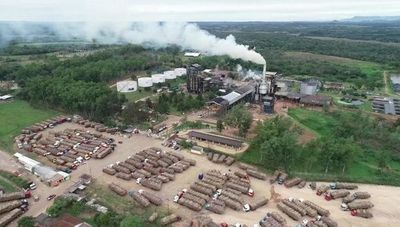 Planta alcoholera de Troche coronó el 2020 con producción récord de caña molida (más de 30.000 familias beneficiadas)