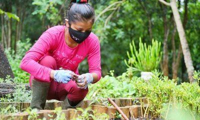 Jóvenes indígenas incorporados a ITAIPU realizan su experiencia laboral en el Centro Ambiental – Diario TNPRESS