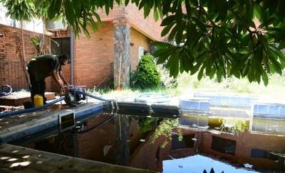 HOY / Intervienen mansión abandonada convertida en reservorio de mosquitos