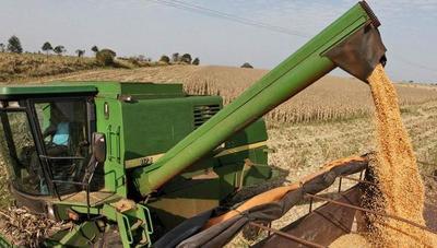 Productores celebran la buena cotización de la soja en el mercado internacional
