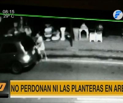Mujer roba planteras y es detenida por vecinos en Areguá