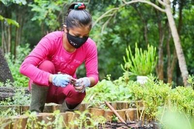 Jóvenes indígenas realizan su experiencia laboral en Itaipu