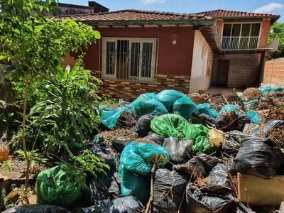 Dengue: Abogados se ofrecen para llevar casos de denuncias contra ciudadanos que no limpien sus propiedades