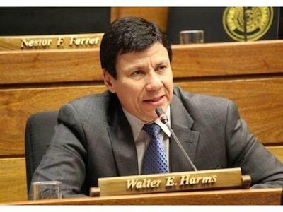 Diputados de Honor Colorado apoyaran interpelación a Villamayor y Lichi