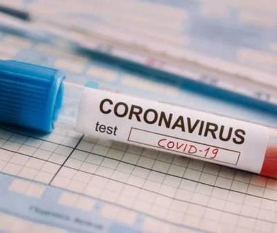 Informe COVID-19 de este martes 12 de enero