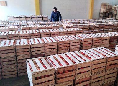 Preocupa a productores importación de tomate