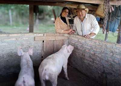 Crédito Agrícola proyecta desembolsar G. 10.000 millones a proyectos productivos de Ñeembucú
