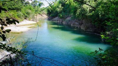El paradisíaco arroyo del Paraguay