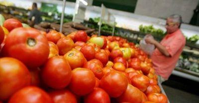 Permiso a importadores de tomate es para abastecimiento local, asegura MAG