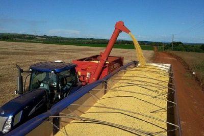 Precio de la soja sigue subiendo ante inminente merma en la región
