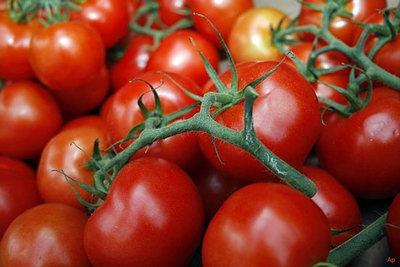 Ministerio de Agricultura libera por cupo la importación de tomates