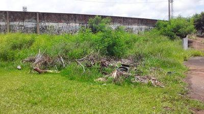 AUDIO: Denuncian abandono y existencia de malezas alrededor del Estadio 2 de Mayo de PJC