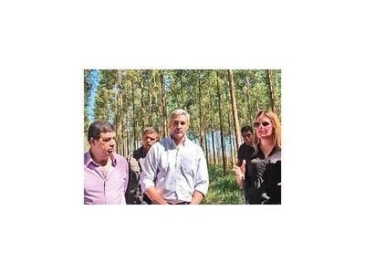 Para  Infona  es ilegal la expropiación del área de bosques