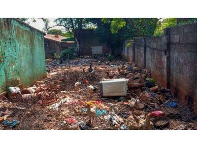 Por la fuerte presencia del dengue en CDE  piden extremar la limpieza