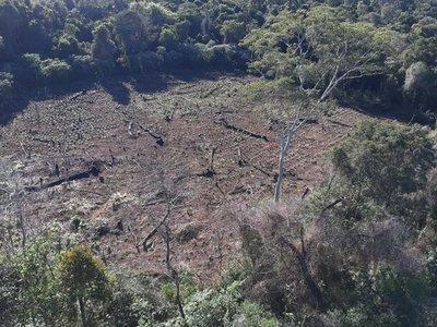 Marina Cué: Ocupación va contra la ley de Deforestación Cero, dice Infona