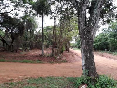 Mujer es detenida por vender terrenos que no eran de su propiedad – Prensa 5