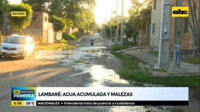 Agua acumulada y malezas en el barrio Santa Rosa II de Lambaré