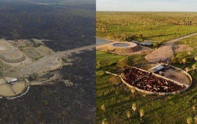 ¡Impresionante! En imágenes lo que vivió el campo: sequía, incendios y lluvias
