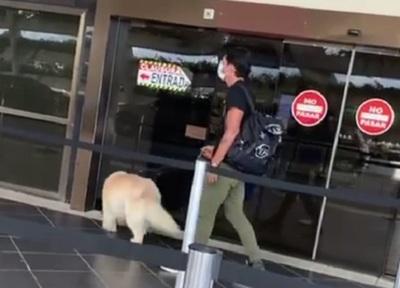 Haedo se marcha y lleva hasta a su perro: ¿Jugará el Apertura?