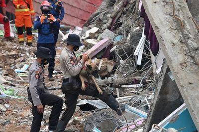 Lluvias torrenciales dificultan búsqueda de supervivientes de sismo en Indonesia