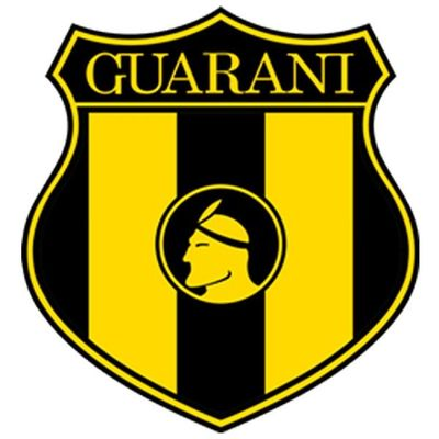 Guaraní arremete y pide remoción de los cinco miembros del Tribunal