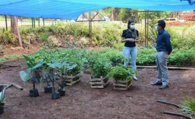 Municipalidad de CDE recibe importante donación de plantines