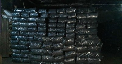 La Nación / En España cae cargamento de cocaína oculto en carbón procedente de Paraguay