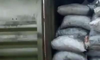España: Paraguayos fueron detenidos por tráfico de drogas