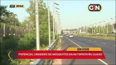 La Autopista Ñu Guazú se volvió un potencial criadero de mosquitos