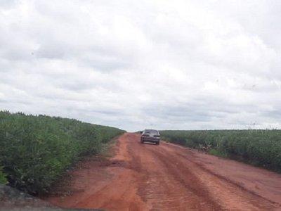Al vuelo de cuervos, buscan a desaparecido en La Paloma