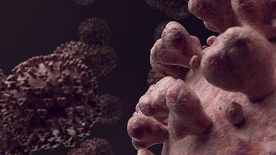 Los síntomas más representativos del COVID-19 es la pérdida de gusto y olfato.