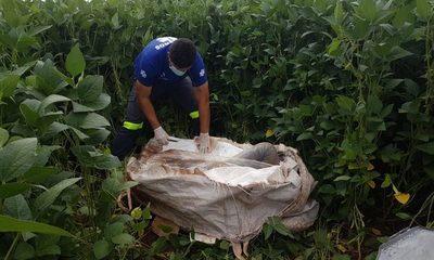 Cadáver de agricultor desaparecido es encontrado en una bolsa de arpillera – Diario TNPRESS