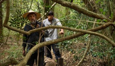 Película paraguaya apunta a los Oscars
