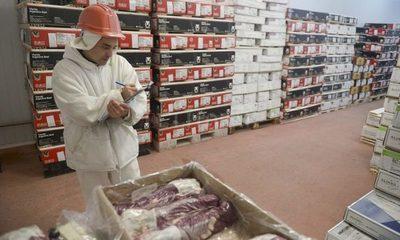 Soja y carne siguen ingresando la mayor cantidad de dólares al país