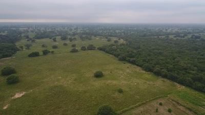 Destacan potencial de transformar campos ganaderos a agrícolas en el Chaco