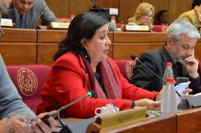Arancel cero: Senadora critica decreto y dice que Abdo exhibe su afecto al stronismo
