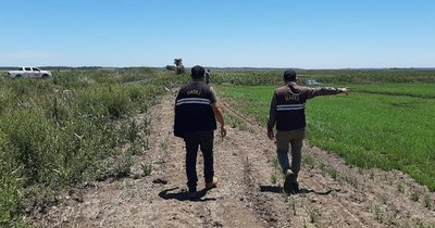 La Nación / Arroceros desvían lagunas y arroyos a sus cultivos, violando ley de impacto ambiental