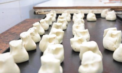 Comuna reactivan planta procesadora de alimentos – Diario TNPRESS