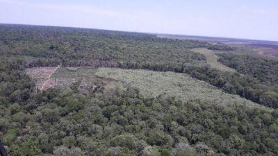Jueza admite diligencia iniciada por campesinos contra la Reserva Morombi