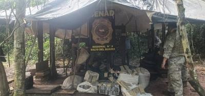 HOY / SENAD anula más de 5 toneladas de marihuana dentro de la Reserva Maracaná