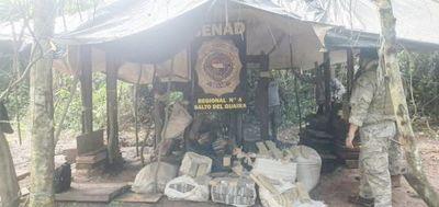 SENAD destruye 15 toneladas de marihuana en dos operativos en el norte del país