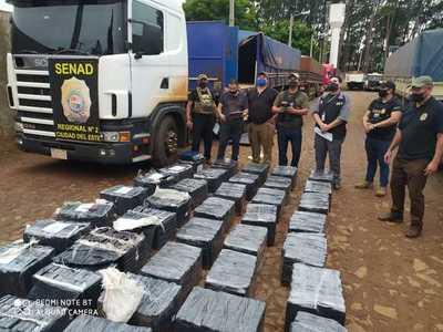 Incautan más de 1.600 kilos de marihuana oculta en compartimiento de tractocamión