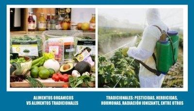 ALIMENTOS ORGÁNICOS VS ALIMENTOS TRADICIONALES