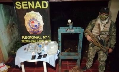 HOY / Capturan a brasileños que procesaban cocaína en Pedro Juan