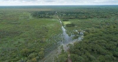 La Nación / Comunidades indígenas del Chaco claman asistencia del Estado