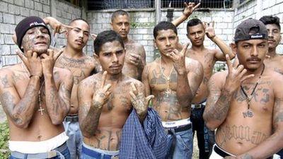 Historia criminal de la Mara Salvatrucha: cómo pasó de pandilla callejera en Los Ángeles y El Salvador a organización terrorista